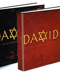 David The Illustrated Novel Vol 1 & 2